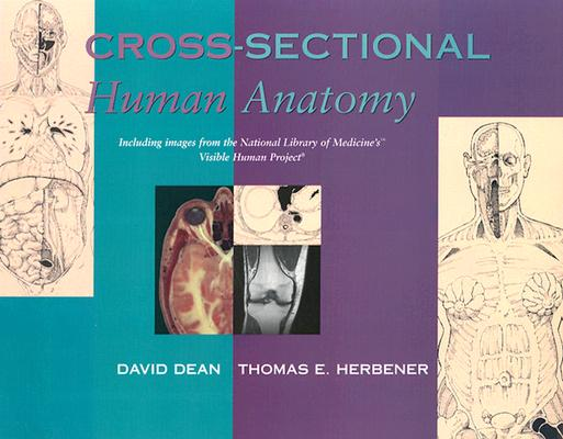 Cross Sectional Human Anatomy By Dean, David/ Herbener, Thomas E.